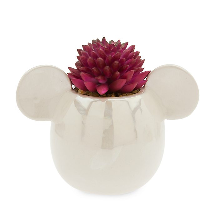 Pianta succulenta artificiale Topolino Disney Store