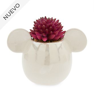 Planta artificial Mickey Mouse, Disney Store