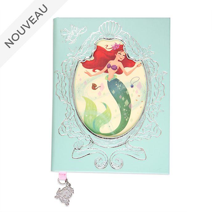 Disney Store Journal 30e anniversaire de La Petite Sirène