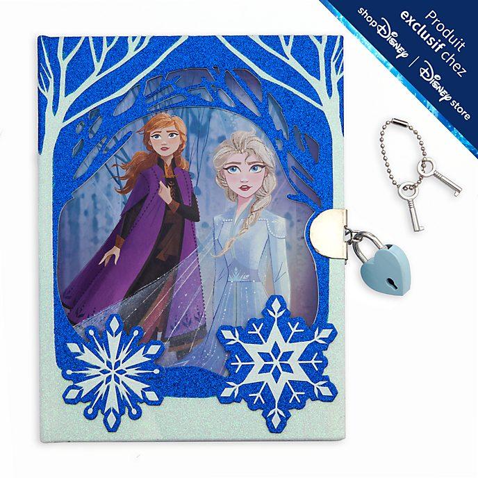 Disney Store Journal intime La Reine des Neiges2
