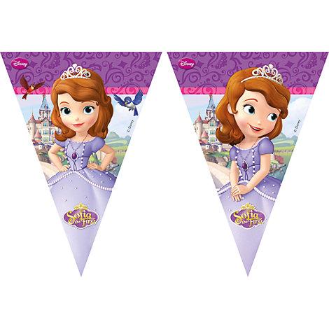 Guirlande de fanions Princesse Sofia