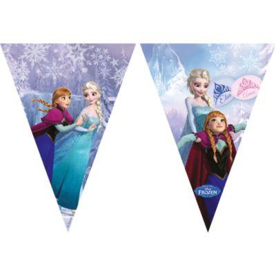 Frozen Flag Banner