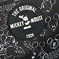 Samsonite Mickey: True Authentic Small Rolling Luggage