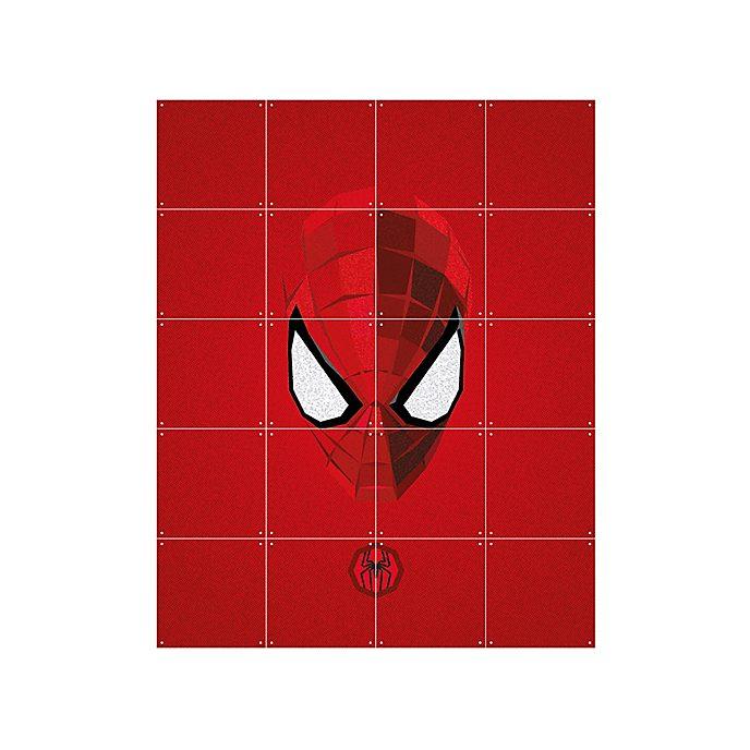 Panel decorativo de Spider-Man de IXXI