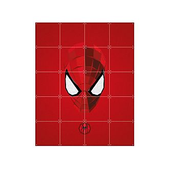 Panel decorativo de Spider-Man de IXXI
