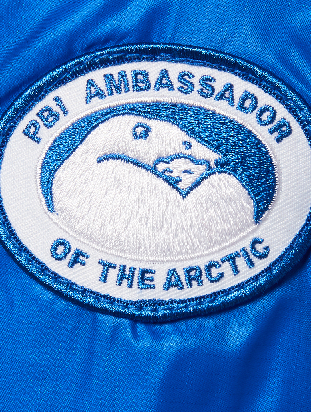 CANADA GOOSE PBI Camp Hoody Down Puffer Jacket Designers Blue