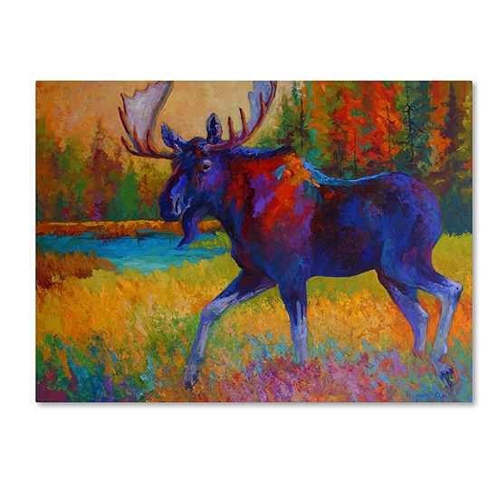 Trademark Fine Art Marion Rose Majestic Moose Giclee Canvas Art