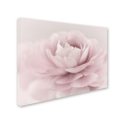 Trademark Fine Art Cora Niele Stylisch Rose Pink Giclee Canvas Art