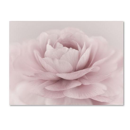 Trademark Fine Art Cora Niele Stylisch Rose Pink Giclee Canvas Art
