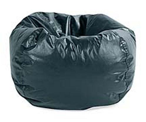 Beanbag Refill