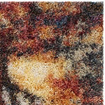 Safavieh Gypsy Collection Jackalyn Abstract Runner Rug