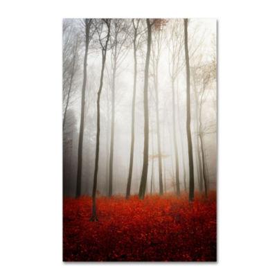 Trademark Fine Art Philippe Sainte-Laudy LeaflessGiclee Canvas Art