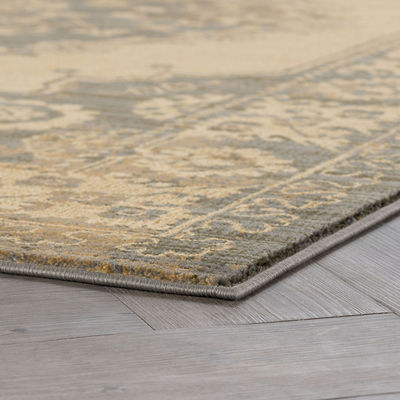 Tayse Fiona Transitional Border Area Rug