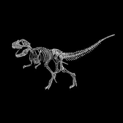 Los Angeles Pop Art Women's Raglan Word Art T-shirt - Dinosaur T-Rex Skeleton