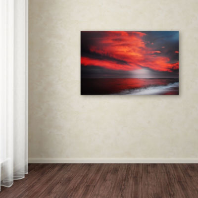 Trademark Fine Art Philippe Sainte-Laudy The GreatGig in the Sky Giclee Canvas Art