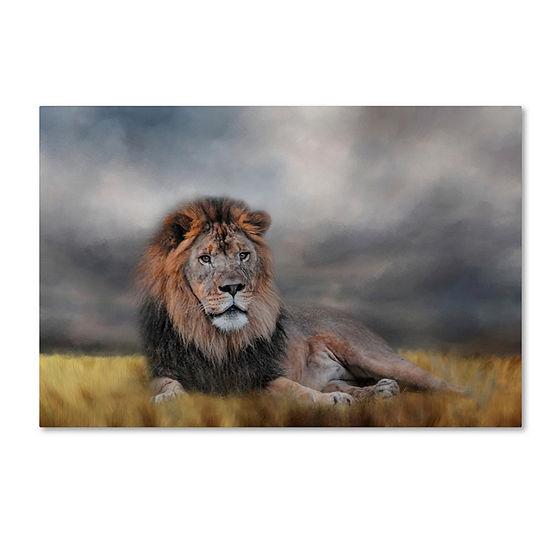 Trademark Fine Art Jai Johnson Lion Waiting For The Storm Giclee Canvas Art