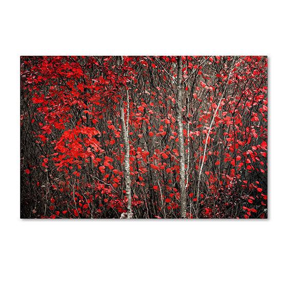 Trademark Fine Art Philippe Sainte-Laudy The HushBefore Winter Giclee Canvas Art