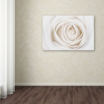 Trademark Fine Art Cora Niele White Rose Giclee Canvas Art