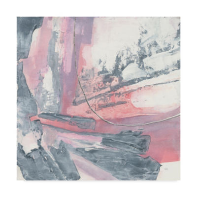 Trademark Fine Art Chris Paschke Whitewashed BlushI Giclee Canvas Art