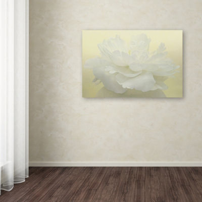 Trademark Fine Art Cora Niele Pure White Peony Giclee Canvas Art