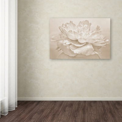 Trademark Fine Art Cora Niele White Peony Giclee Canvas Art