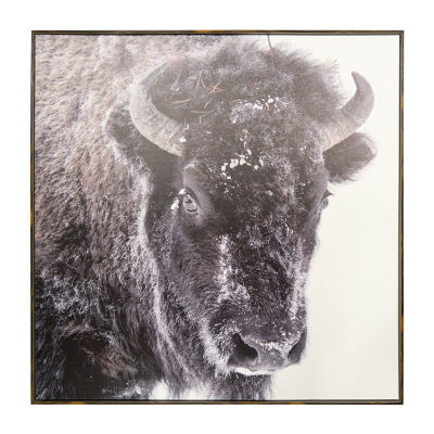 New View Snow Buffalo Framed Embellished Canvas Canvas Art
