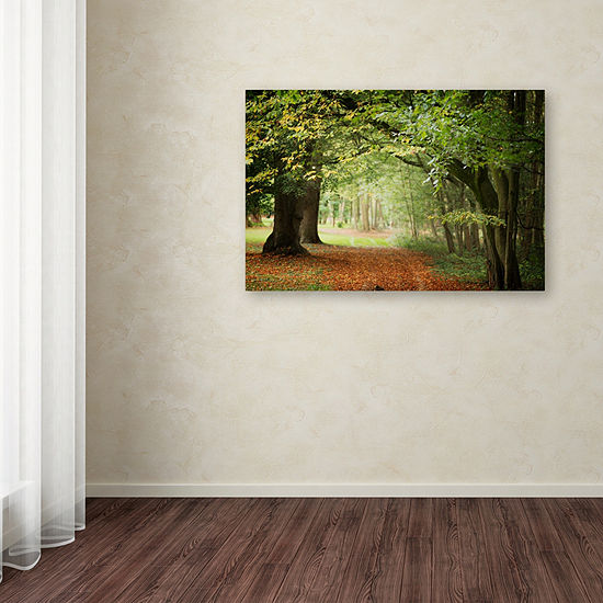 Trademark Fine Art Philippe Sainte-Laudy Through the Woods Giclee Canvas Art