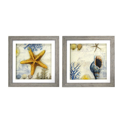 New View Antique Shells Multi Layer Glass - Set 2-pc. Canvas Art