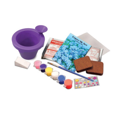 Perfect Craft Flower Garden Kit