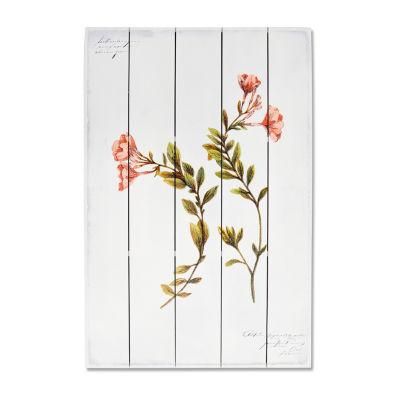 New View Artistic Botanical 1 Wood Box Plank Canvas Art