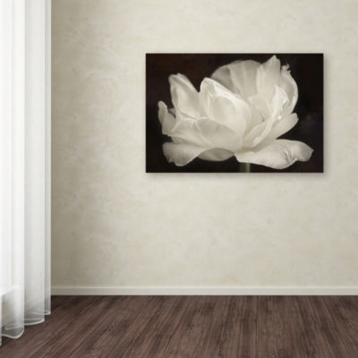 Trademark Fine Art Cora Niele White Tulip III Giclee Canvas Art