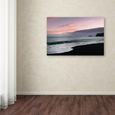 Trademark Fine Art Philippe Sainte-Laudy Vik Birdsat Sunset Giclee Canvas Art