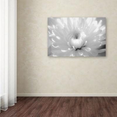 Trademark Fine Art PIPA Fine Art Infrared Flower 2Giclee Canvas Art