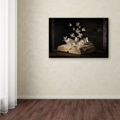 Trademark Fine Art Heather Bonadio Lepidopterology Giclee Canvas Art
