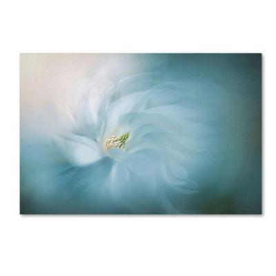 Trademark Fine Art Jacky Parker Serene Giclee Canvas Art