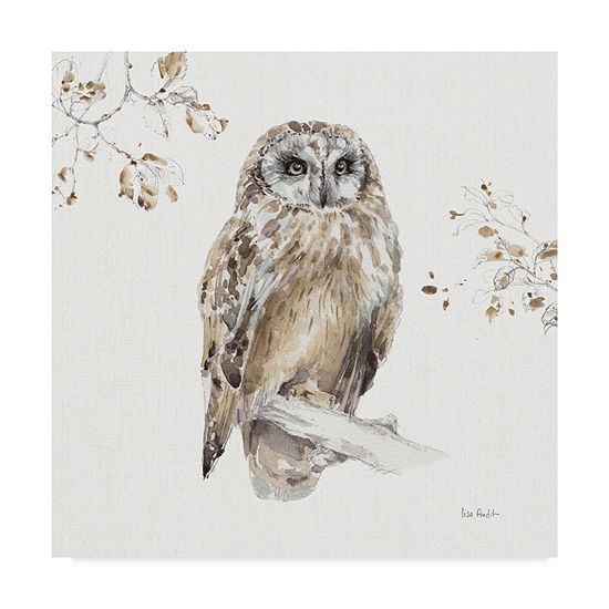 Trademark Fine Art Lisa Audit A Woodland Walk Viii Giclee Canvas Art
