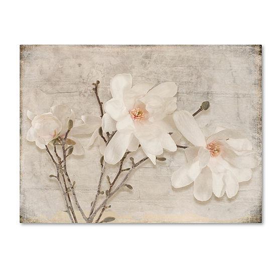 Trademark Fine Art Light Box Journal Spring Magnolia Giclee Canvas Art
