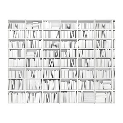 Brewster Wall Library Mural Wall Decal