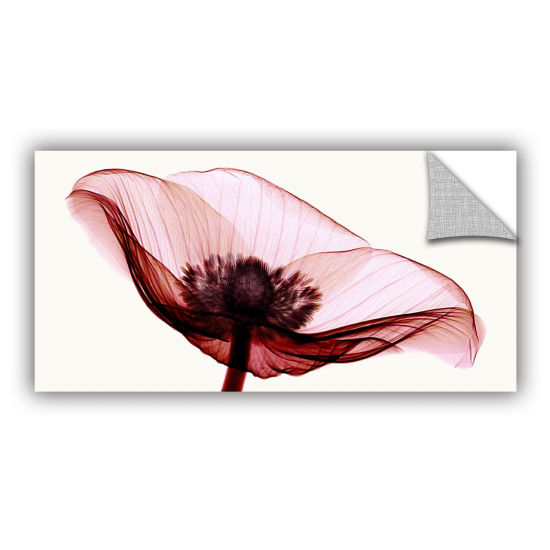 Brushstone Anemone I Removable Wall Decal
