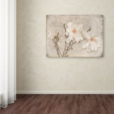 Trademark Fine Art LightBoxJournal Spring MagnoliaGiclee Canvas Art