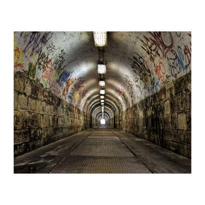 Brewster Wall Graffiti Tunnel Mural Wall Decal