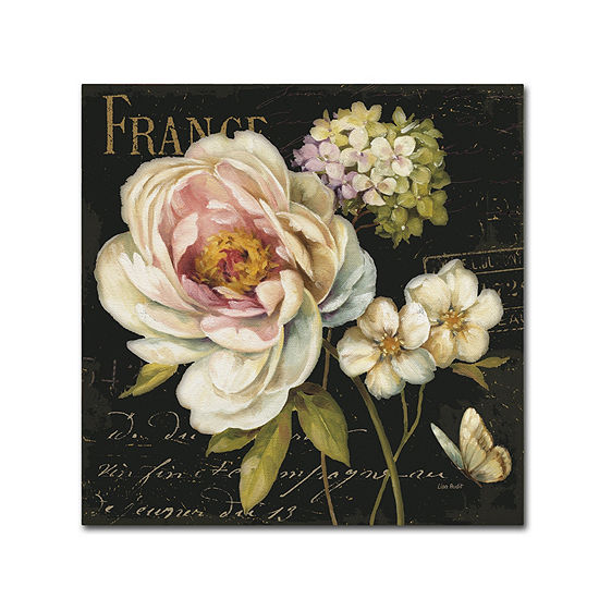 Trademark Fine Art Lisa Audit Marche de Fleurs on Black Giclee Canvas Art