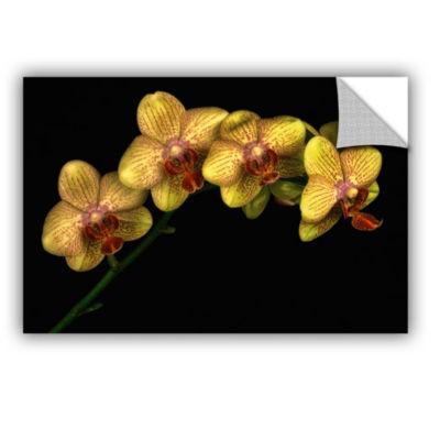 Phalaenopsis Maska Removable Wall Decal