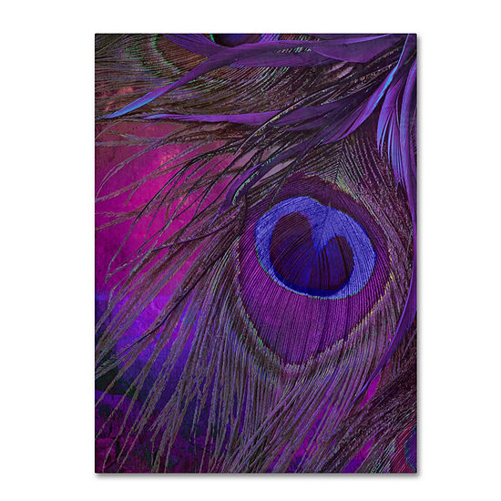 Trademark Fine Art Color Bakery Peacock Candy IV Giclee Canvas Art