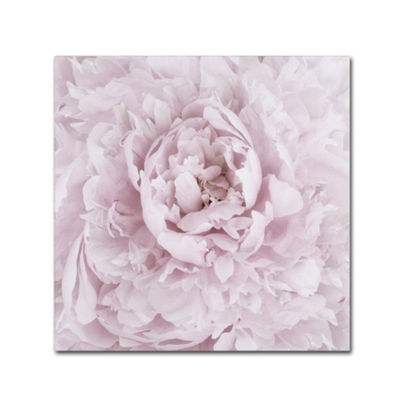 Trademark Fine Art Cora Niele Pink Peony Flower Giclee Canvas Art