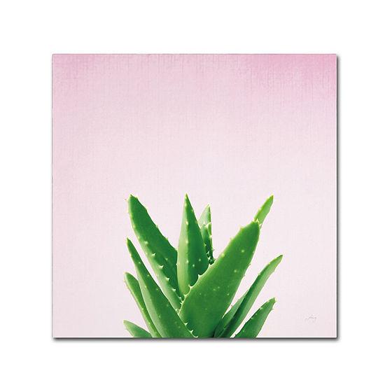Trademark Fine Art Felicity Bradley Succulent Simplicity V On Pink Giclee Canvas Art