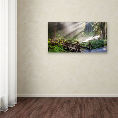 Trademark Fine Art Pierre Leclerc Forest SunlightGiclee Canvas Art