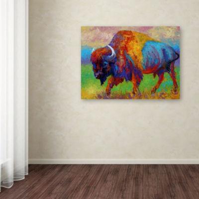 Trademark Fine Art Marion Rose Journey Unknown Giclee Canvas Art