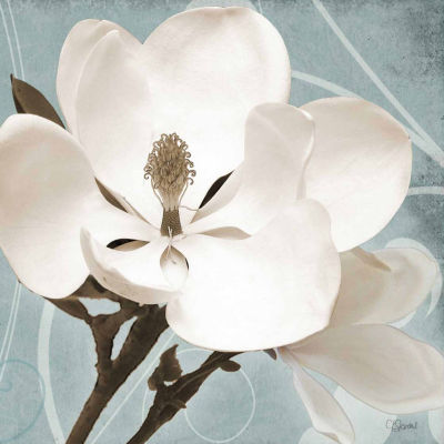 Magnolia Blue I Canvas Art