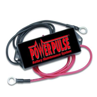 Pulsetech Powerpulse 24 Volt Battery Maintenance System